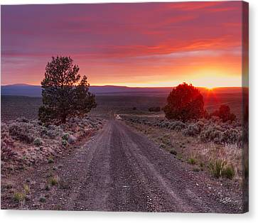 Desert Road 4 Canvas Print by Leland D Howard