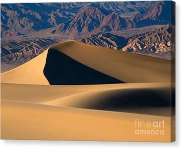 Desert Sand Canvas Print by Mike Dawson
