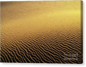 Desert Sands Canvas Print by Paul Woodford