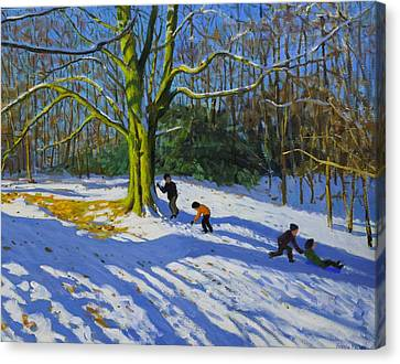 Detail Of Top Of Allestree Park Canvas Print by Andrew Macara