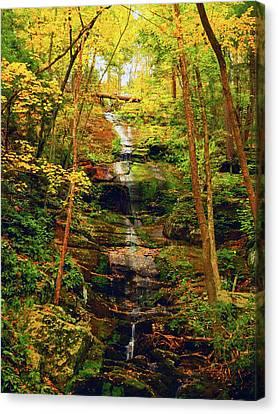 Dingmans Falls 4 Canvas Print by Raymond Salani III