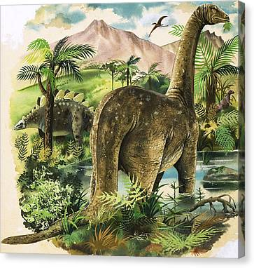 Dinosaurs Canvas Print by English School