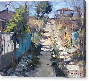 Dirt Road At Kostas Garden Canvas Print by Ylli Haruni