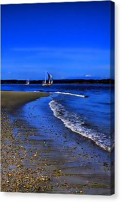 Discovery Park North Beach Canvas Print by David Patterson