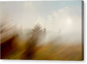 As The Wind Blows Canvas Print by Diana Angstadt