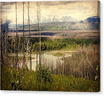 Distant View Canvas Print by Marty Koch