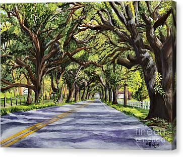 Docville Oaks Canvas Print by Elaine Hodges