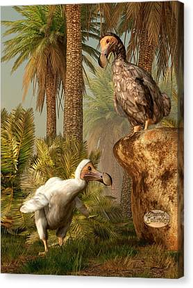 Dodo Hide N Seek Canvas Print by Daniel Eskridge