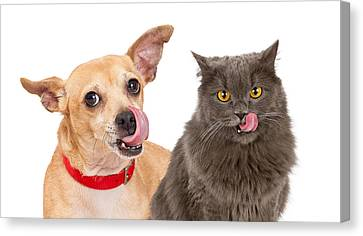 Dog And Cat Licking Lips Canvas Print by Susan Schmitz