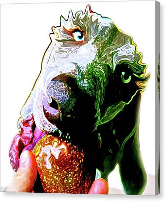 Dog And Passionfruit #2 Canvas Print by Sori Ammann