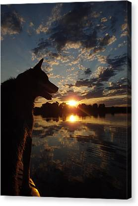 Dog Paddle Sunset Canvas Print by James Peterson