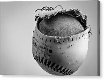 Dog's Ball Canvas Print by Bob Orsillo