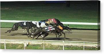 Dogs Racing Canvas Print by Tom Conway