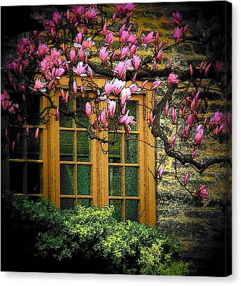 Dogwood In The Spring Canvas Print by Joyce Kimble Smith