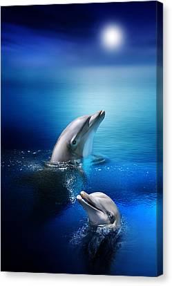 Dolphin Delight Canvas Print by Julie L Hoddinott