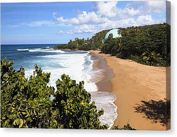 Domes Beach Rincon Puerto Rico Canvas Print by George Oze
