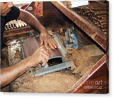 Dominican Cigars Made By Hand Canvas Print by Heather Kirk