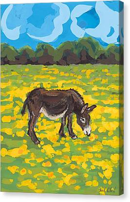 Donkey And Buttercup Field Canvas Print by Sarah Gillard