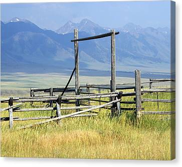 Don't Fence Me In Canvas Print by Marty Koch