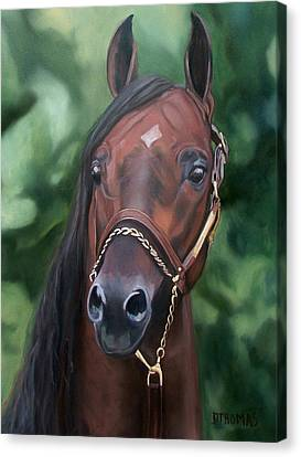 Dont Worry Saddlebred Sire Canvas Print by Donna Thomas