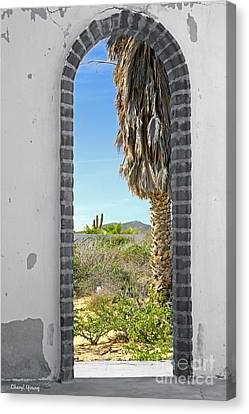 Doorway To The Desert Canvas Print by Cheryl Young