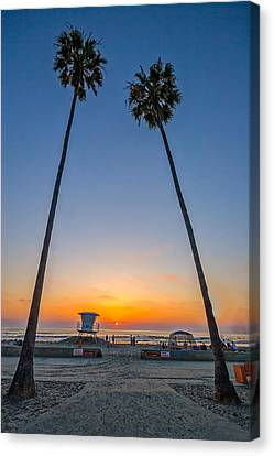 Dos Palms Canvas Print by Peter Tellone