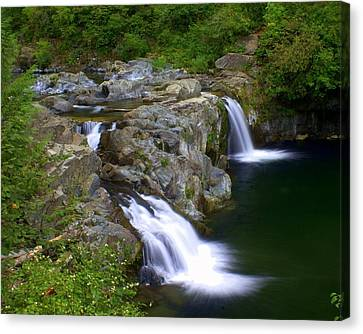 Double Falls Canvas Print by Marty Koch
