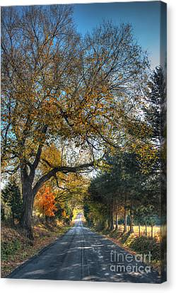 Down A Berger Lane Canvas Print by William Fields