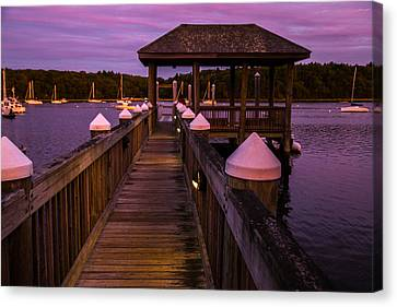 Down At The Dock Canvas Print by Karol Livote