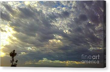 Down Blanket Canvas Print by Tracy Evans