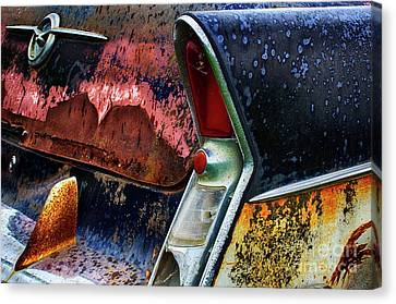 Down In The Dumps 10 Canvas Print by Bob Christopher