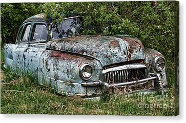 Down In The Dumps 20 Canvas Print by Bob Christopher