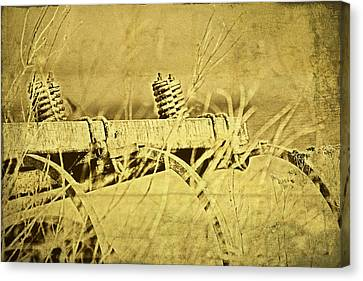 Down On The Farm Canvas Print by Tom Mc Nemar