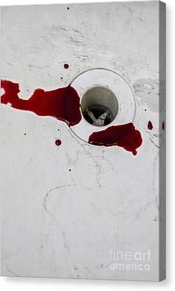 Down The Drain Canvas Print by Margie Hurwich