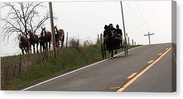 Draft Horses And Amish Canvas Print by R A W M