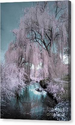 Dream Willows Canvas Print by Tara Turner