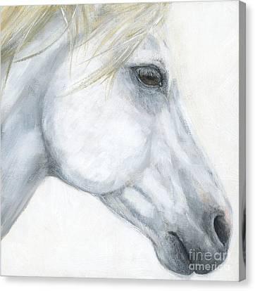 Sacred Stallion Canvas Print by Brandy Woods