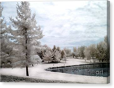 Dreamy Surreal Infrared Pond Landscape Nature Scene  Canvas Print by Kathy Fornal