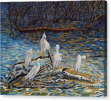 Driftwood Canvas Print by Caroline Street