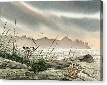 Driftwood Glow Canvas Print by James Williamson
