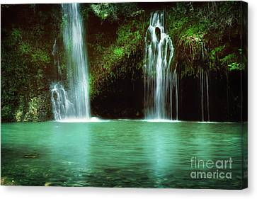 Dripping Springs In The Afternoon Canvas Print by Tamyra Ayles