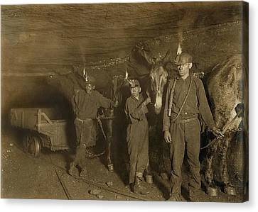 Drivers And Mules With Young Laborers Canvas Print by Everett