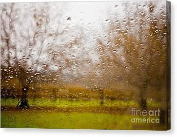 Droplets I Canvas Print by Derek Selander