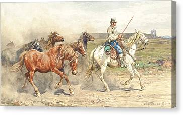 Droving Horses In The Roman Campagna Canvas Print by Enrico Coleman