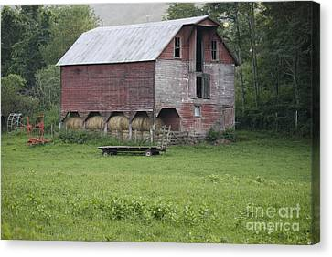 Dry Fork Red Canvas Print by Randy Bodkins