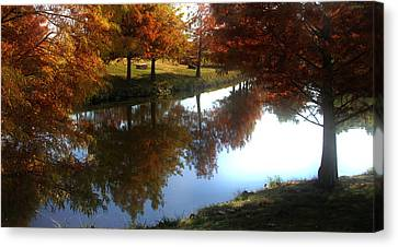 Duck Pond In The Fall Canvas Print by Rebecca Lynn Roby