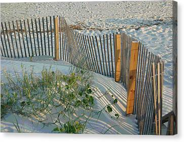Dune Fence Canvas Print by Suzanne Gaff