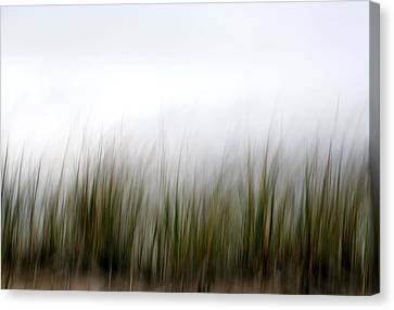 Dune Grass Canvas Print by Doug Hockman Photography