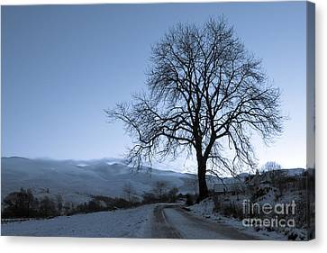 Dusk In Scottish Highlands Canvas Print by David Bleeker