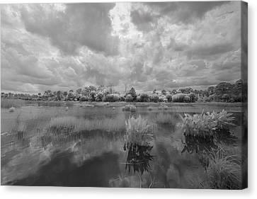 Dyer Pond Canvas Print by Jon Glaser